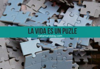 49-la-vida-es-un-puzle-instrucciones