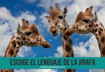 36 la comunicación no vilenta lenguaje del chacal y la jirafa