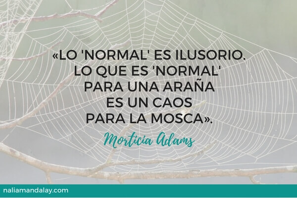 lo-normal-es-ilusorio-morticia-adams