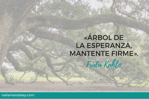 frase-frida-kahlo-arbol-de-la-esperanza